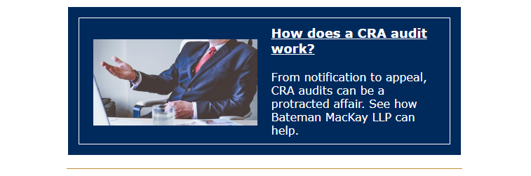How does a CRA audit work blog preview